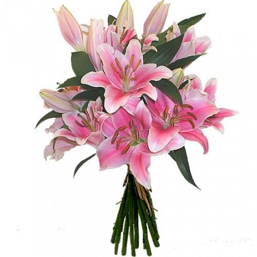 Розовые цветы лилии