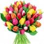 Букет разноцветных тюльпанов